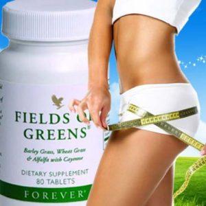 fields_of_greens